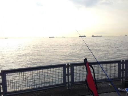 サッパ祭り@本牧海釣り施設