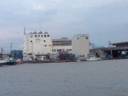 鬼ハードモード イカ釣り@長井漁港