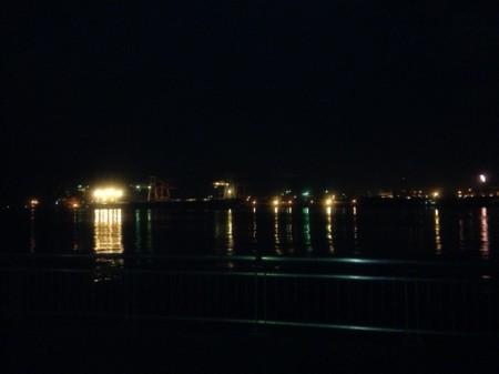 エギングとチョイ投げとサビキ@東扇島西公園