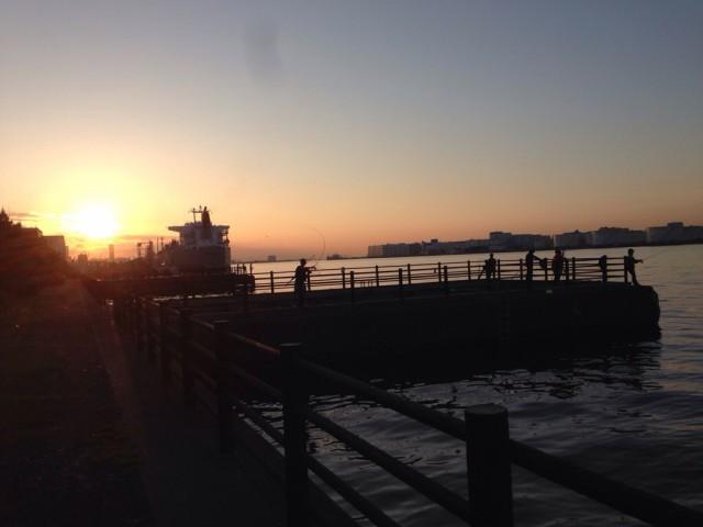 水江町公園 シーバス釣り