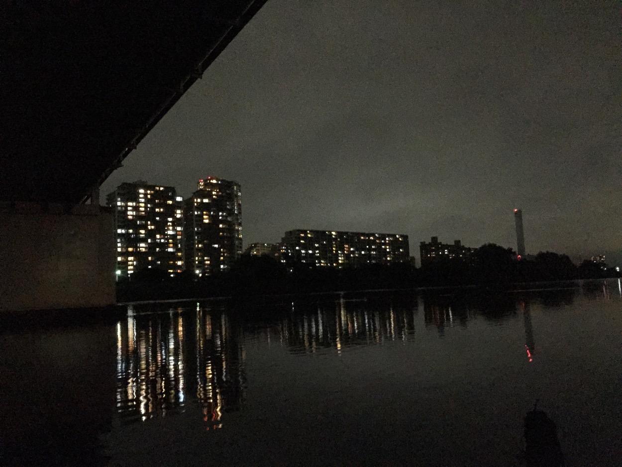 多摩川ガス橋でテナガエビ釣り 2015年度4回目